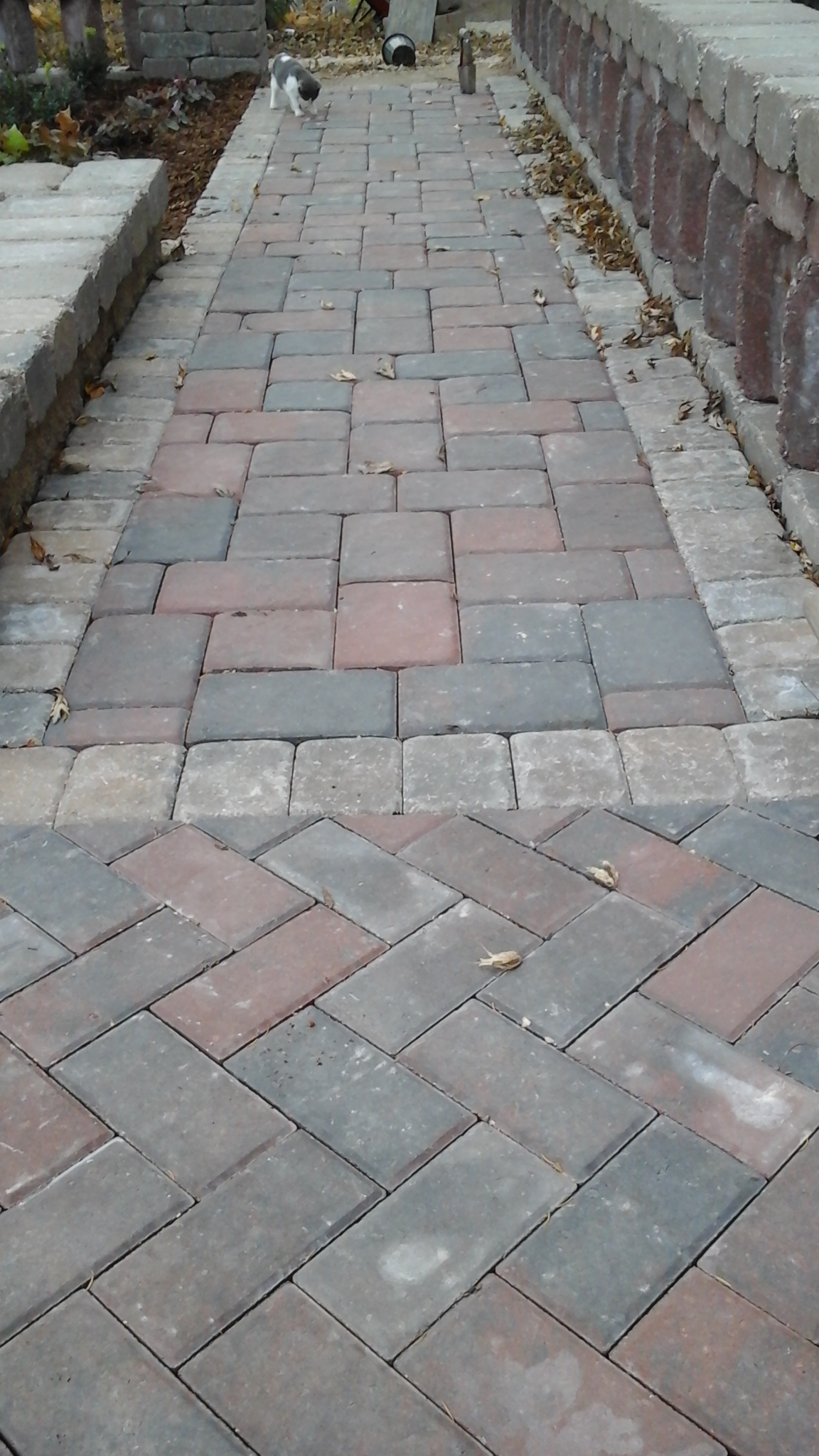 Brick Patterns with Borders